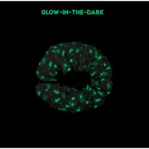 space-glow_in_the_dark
